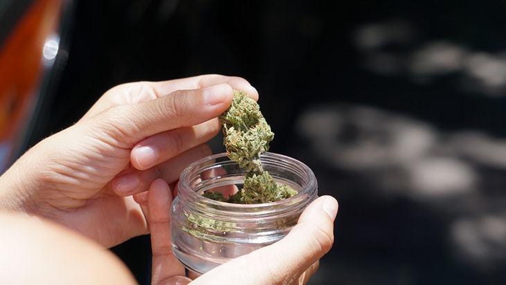Person taking out dried cannabis buds from a jar