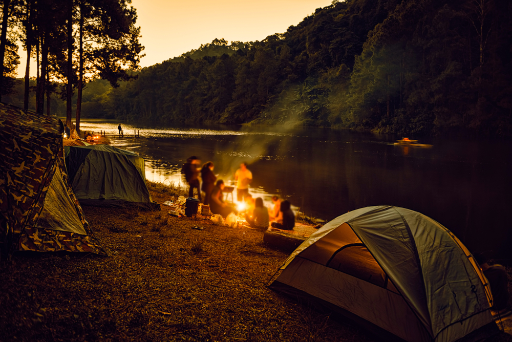 Group of sober friends gathered around a campfire.
